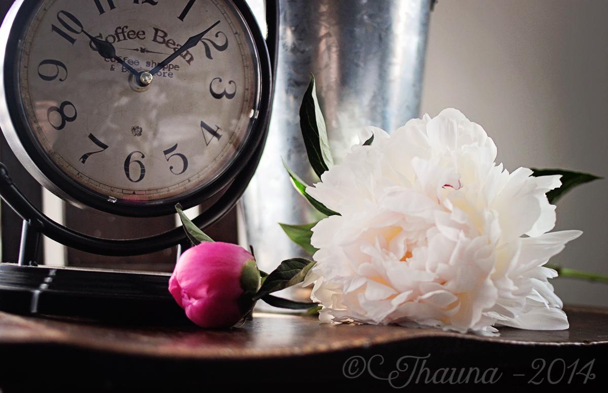 clock-flowers